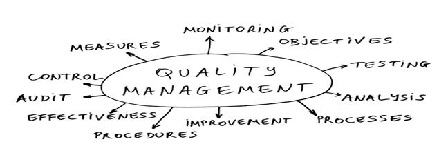 Quality Management Brainstorm Image