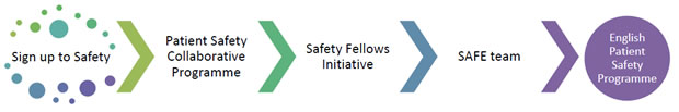 Patient Safety Programme Flow